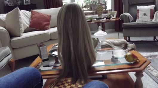 blake wig by jon renau shot in natural light