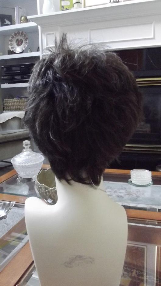 Confidence Wig by Gabor in Dark Chestnut